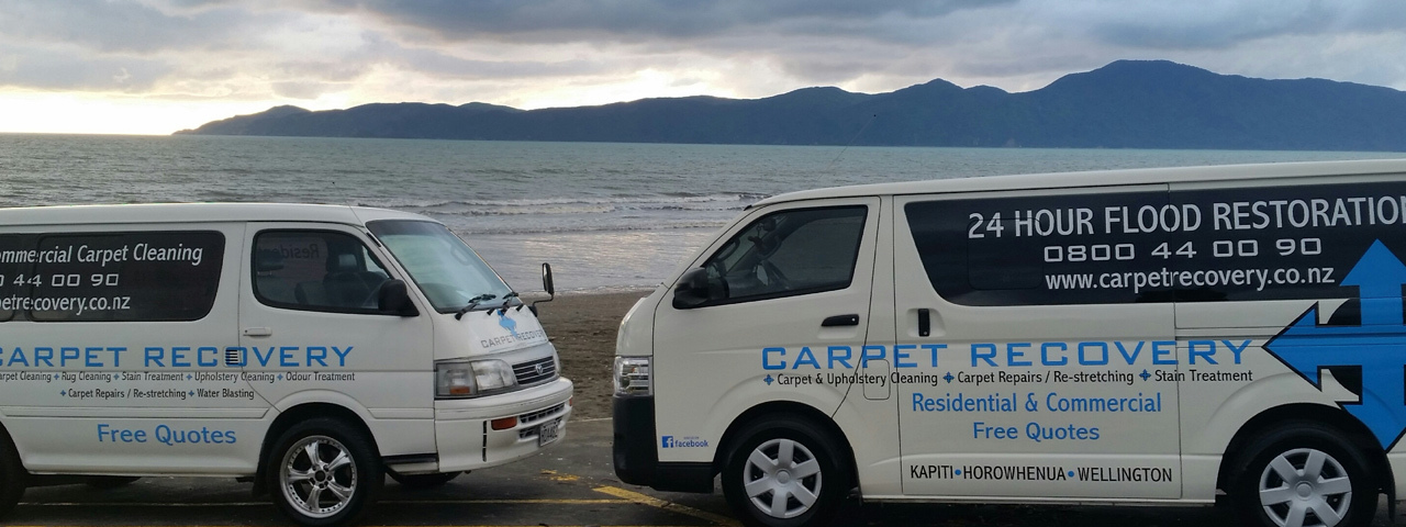 Wellington Carpet Cleaner 10 Photos Cleaning 4a 154 A1carpetcleaners Co Nz